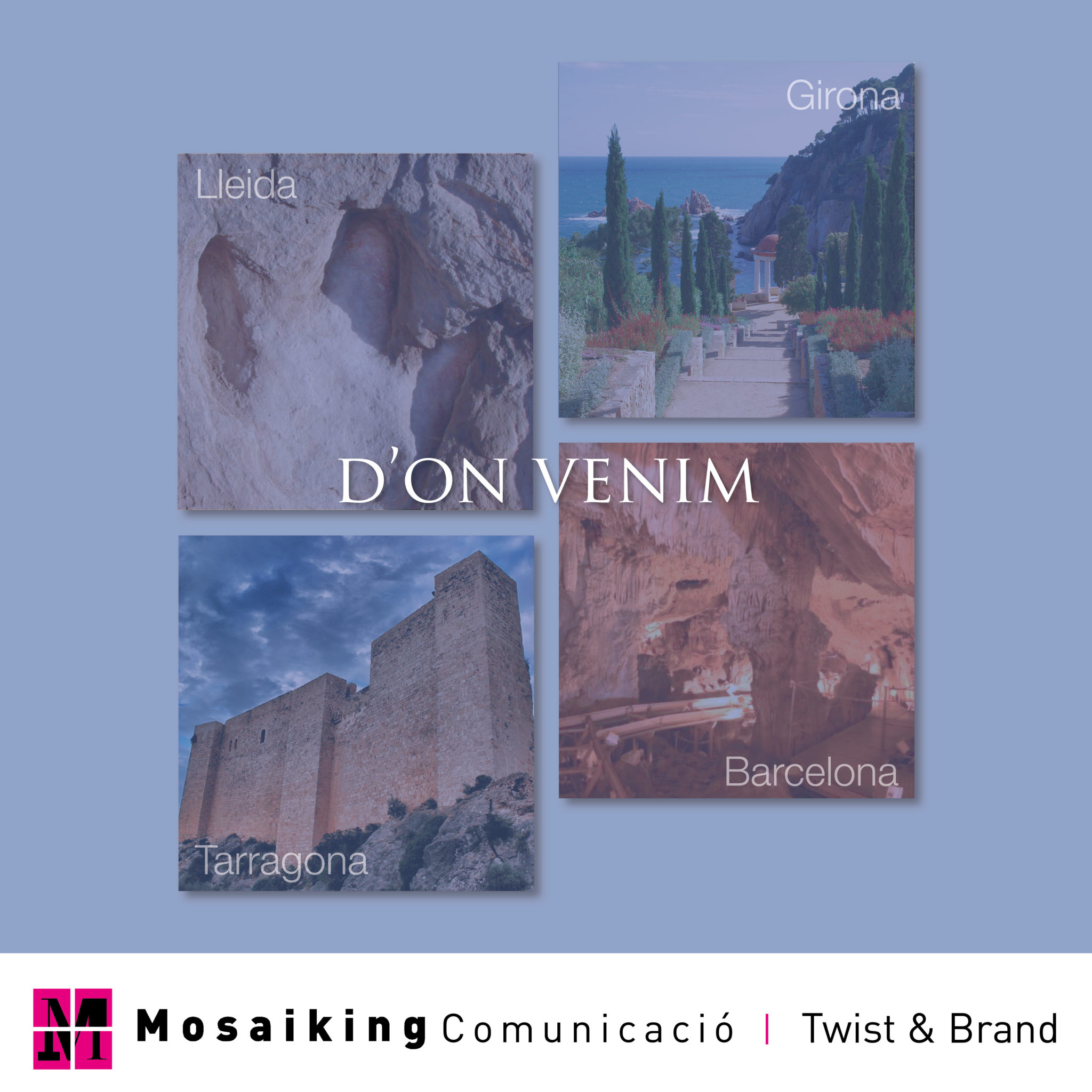 Mosaiking d'estiu – D'on venim