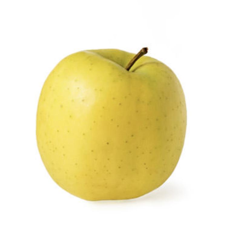 Malus domestica (o poma vulgar) i la tornada a la feina